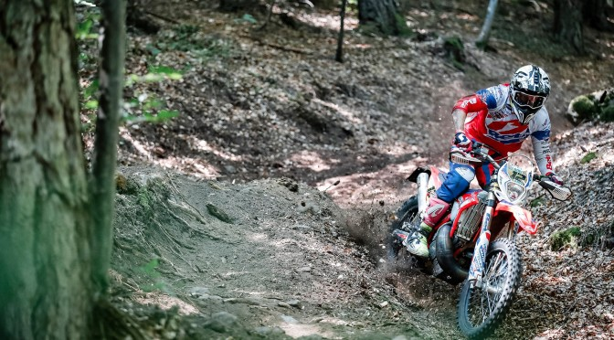 DOUBLE DELIGHT FOR FREEMAN AT ACERBIS GP OF ITALY